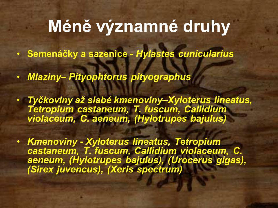 Méně významné druhy Semenáčky a sazenice - Hylastes cunicularius Mlaziny – Pityophtorus pityographus Tyčkoviny až slabé kmenoviny –Xyloterus lineatus, Tetropium castaneum, T.