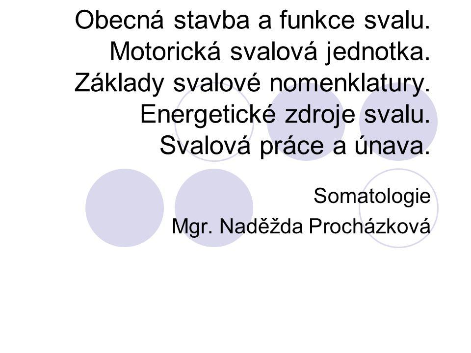 Obecná stavba a funkce svalu. Motorická svalová jednotka. Základy svalové nomenklatury. Energetické zdroje svalu. Svalová práce a únava. Somatologie M