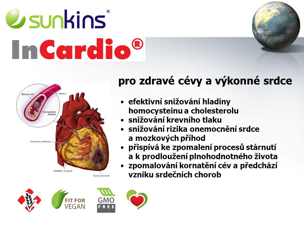 Vyvážená výživa celého organismu 4x 150 g = 600 g – měsíční kúra zdravé jídlo s vyváženým složením bílkovin, sacharidů a ideálně vyváženými denními do