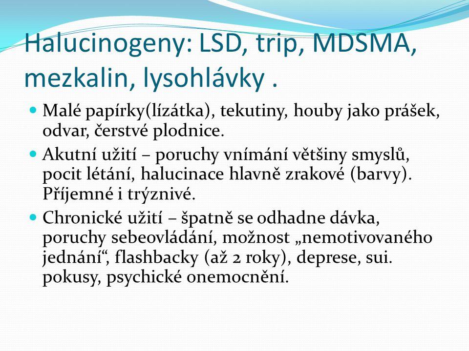Halucinogeny: LSD, trip, MDSMA, mezkalin, lysohlávky.