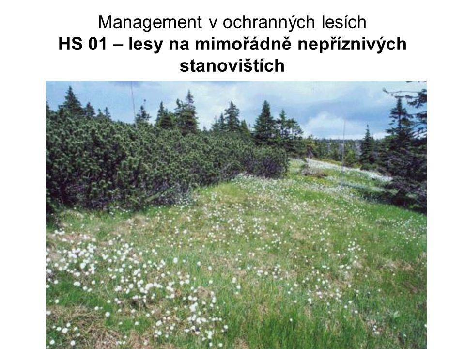 Management v ochranných lesích HS 01 – lesy na mimořádně nepříznivých stanovištích
