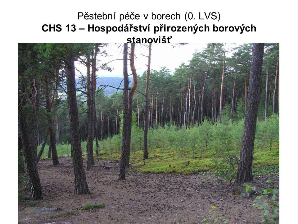 Pěstební péče v borech (0. LVS) CHS 13 – Hospodářství přirozených borových stanovišť