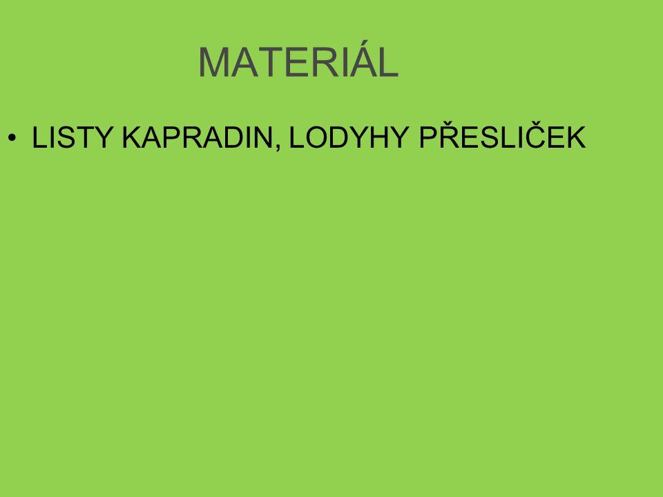 MATERIÁL LISTY KAPRADIN, LODYHY PŘESLIČEK