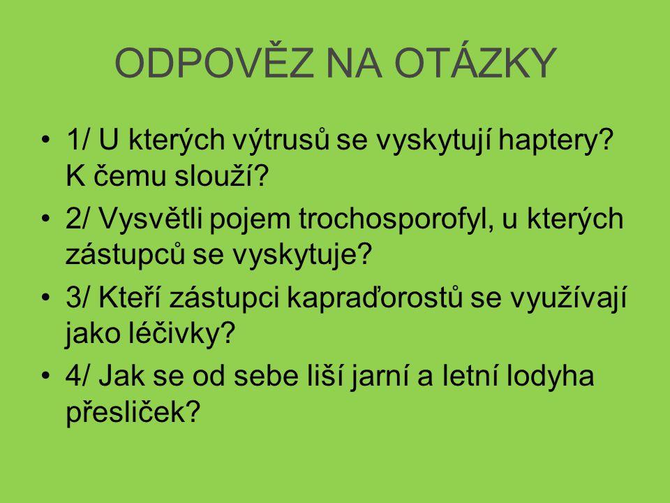 Seznam použitých zdrojů www.bizu.rajce.idnes.cz [online].