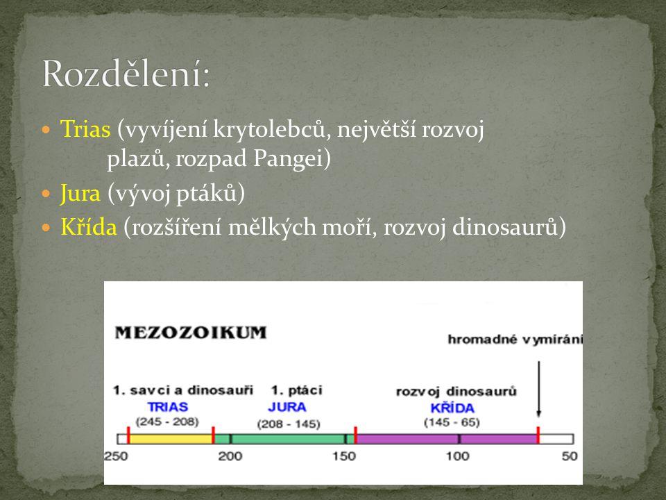 Trias (vyvíjení krytolebců, největší rozvoj plazů, rozpad Pangei) Jura (vývoj ptáků) Křída (rozšíření mělkých moří, rozvoj dinosaurů)