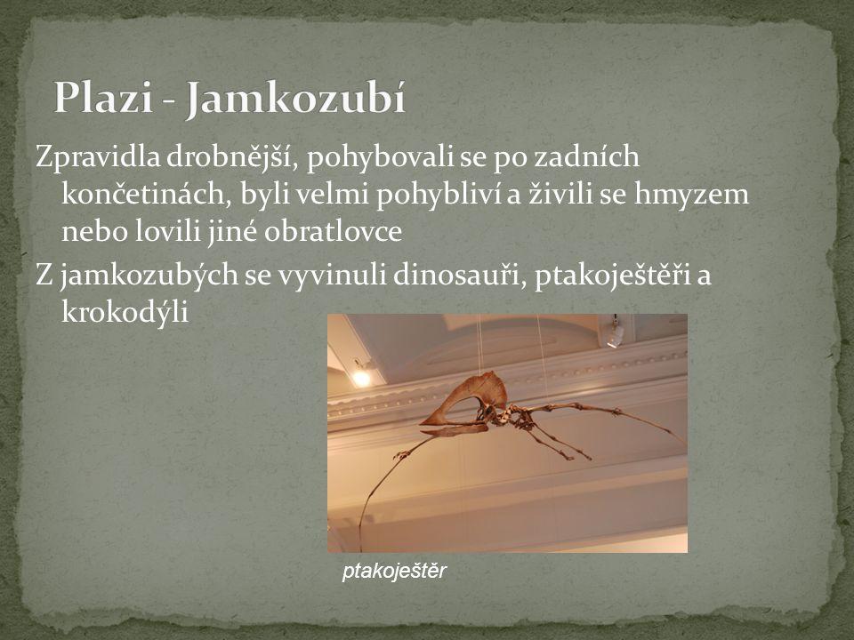 Zpravidla drobnější, pohybovali se po zadních končetinách, byli velmi pohybliví a živili se hmyzem nebo lovili jiné obratlovce Z jamkozubých se vyvinu