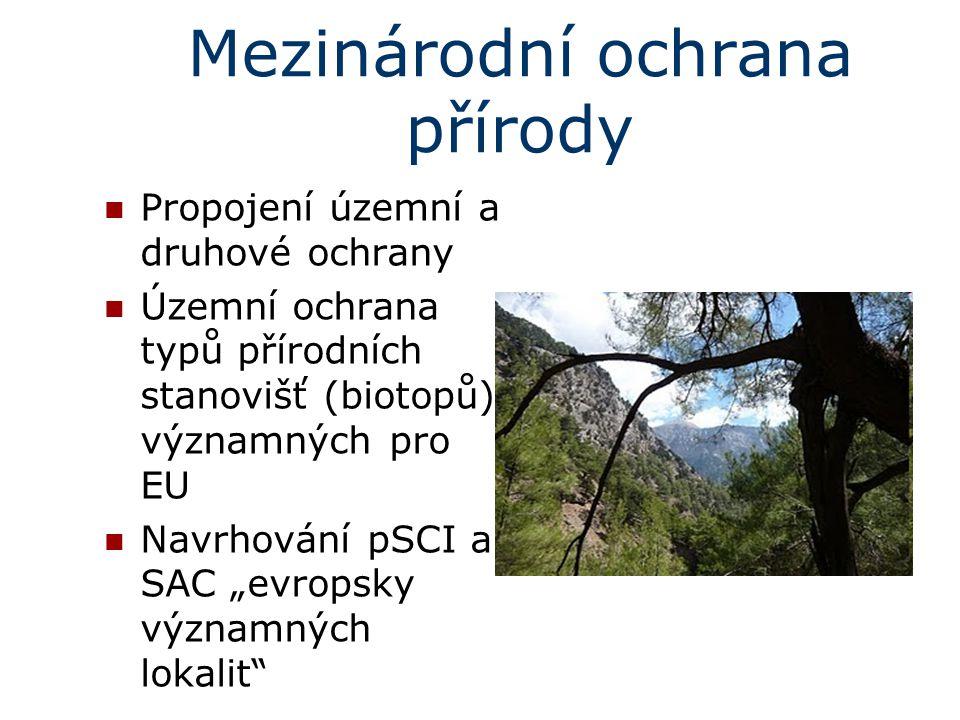 Mezinárodní ochrana přírody Propojení územní a druhové ochrany Územní ochrana typů přírodních stanovišť (biotopů) významných pro EU Navrhování pSCI a