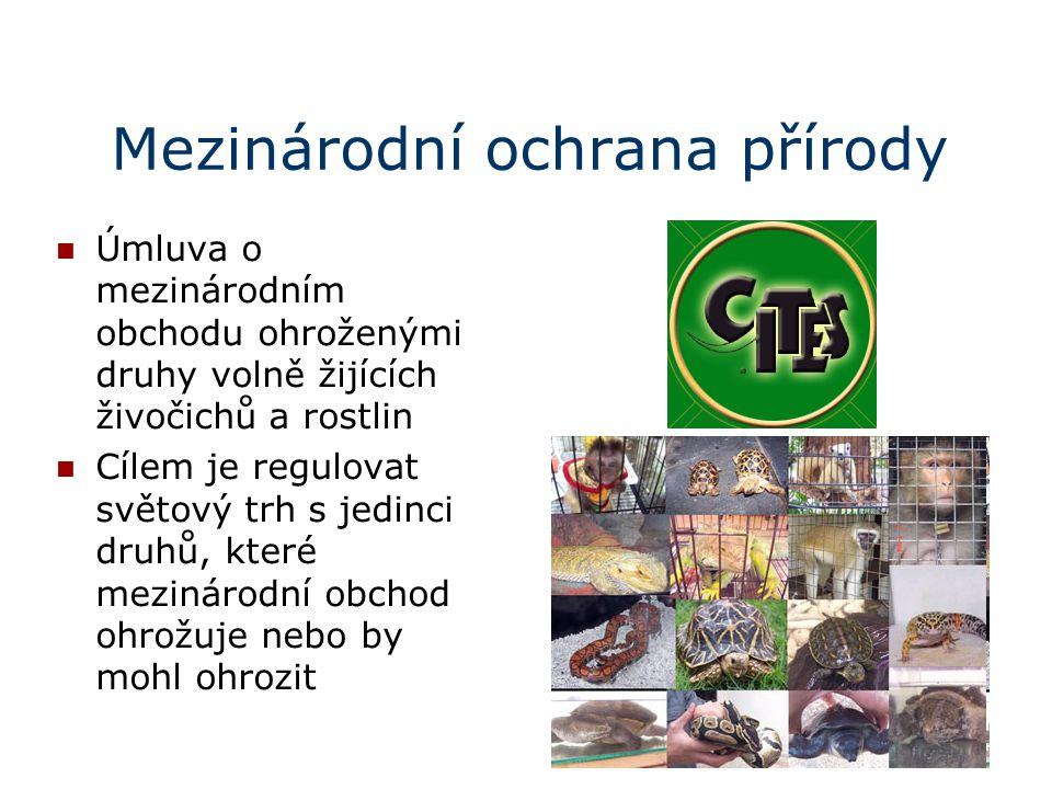 Mezinárodní ochrana přírody Úmluva o mezinárodním obchodu ohroženými druhy volně žijících živočichů a rostlin Cílem je regulovat světový trh s jedinci