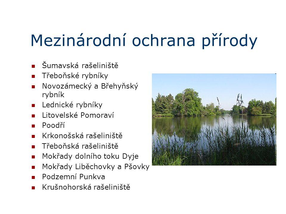 Mezinárodní ochrana přírody Šumavská rašeliniště Třeboňské rybníky Novozámecký a Břehyňský rybník Lednické rybníky Litovelské Pomoraví Poodří Krkonošs