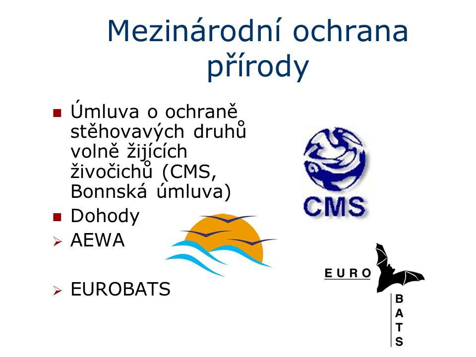 Mezinárodní ochrana přírody Úmluva o ochraně stěhovavých druhů volně žijících živočichů (CMS, Bonnská úmluva) Dohody  AEWA  EUROBATS