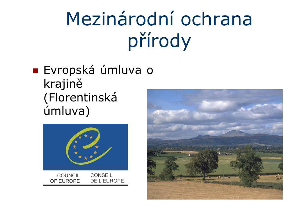 Mezinárodní ochrana přírody Evropská úmluva o krajině (Florentinská úmluva)