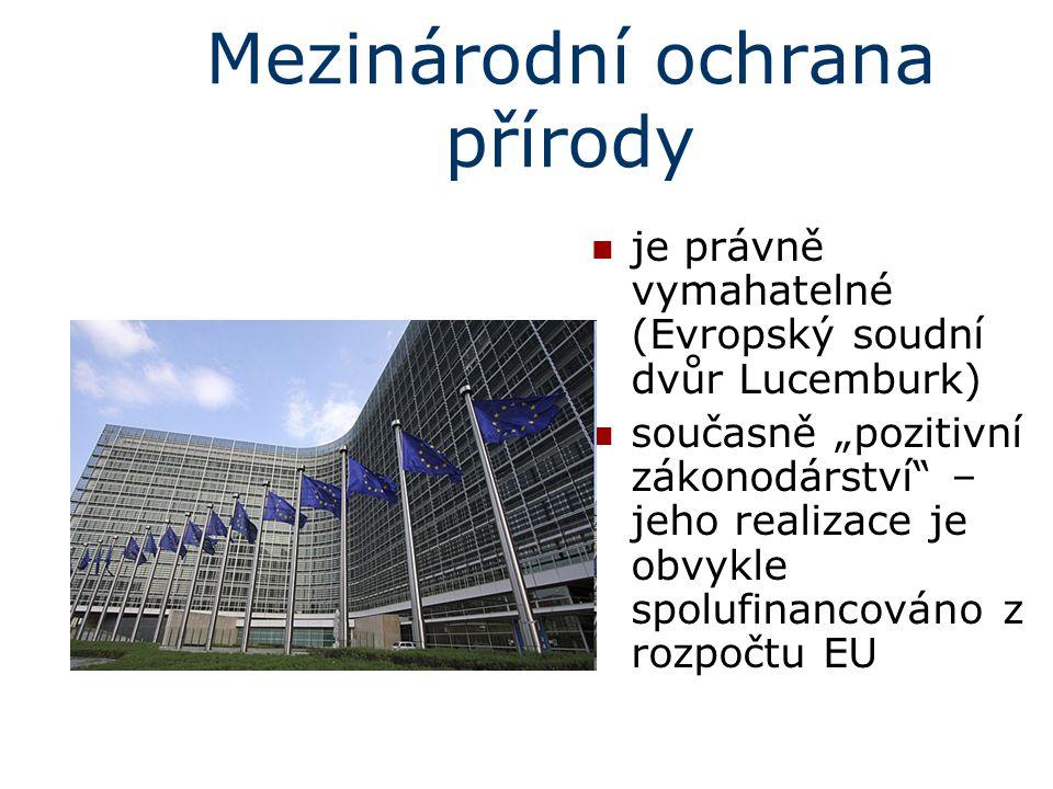 Mezinárodní ochrana přírody V ČR nový článek č.10 Ústavy ČR: (platný od 1.6.