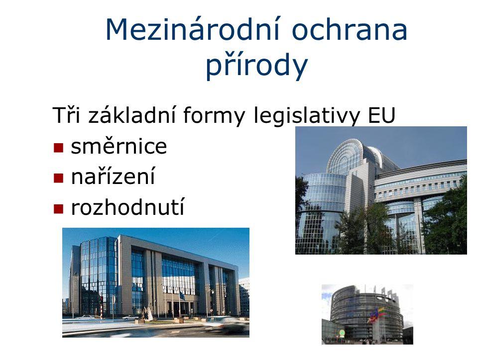 Mezinárodní ochrana přírody Tři základní formy legislativy EU směrnice nařízení rozhodnutí