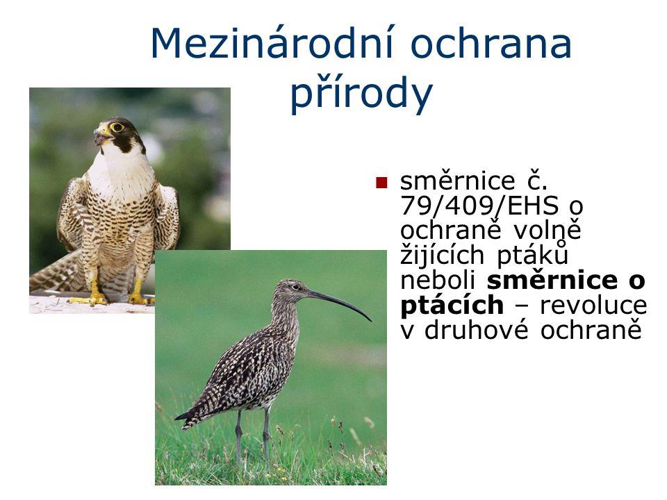 Mezinárodní ochrana přírody směrnice č. 79/409/EHS o ochraně volně žijících ptáků neboli směrnice o ptácích – revoluce v druhové ochraně