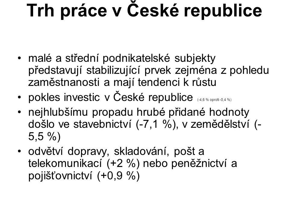 Trh práce v České republice malé a střední podnikatelské subjekty představují stabilizující prvek zejména z pohledu zaměstnanosti a mají tendenci k růstu pokles investic v České republice (-4,6 % oproti -0,4 %) nejhlubšímu propadu hrubé přidané hodnoty došlo ve stavebnictví (-7,1 %), v zemědělství (- 5,5 %) odvětví dopravy, skladování, pošt a telekomunikací (+2 %) nebo peněžnictví a pojišťovnictví (+0,9 %)