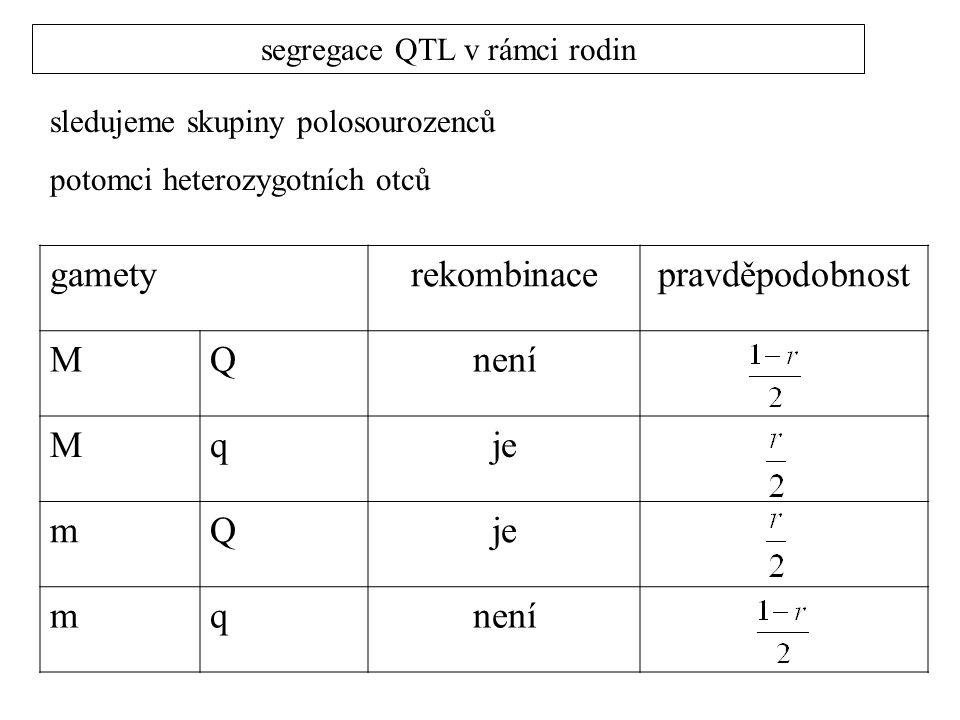 segregace QTL v rámci rodin sledujeme skupiny polosourozenců potomci heterozygotních otců gametyrekombinacepravděpodobnost MQnení Mqje mQ mqnení