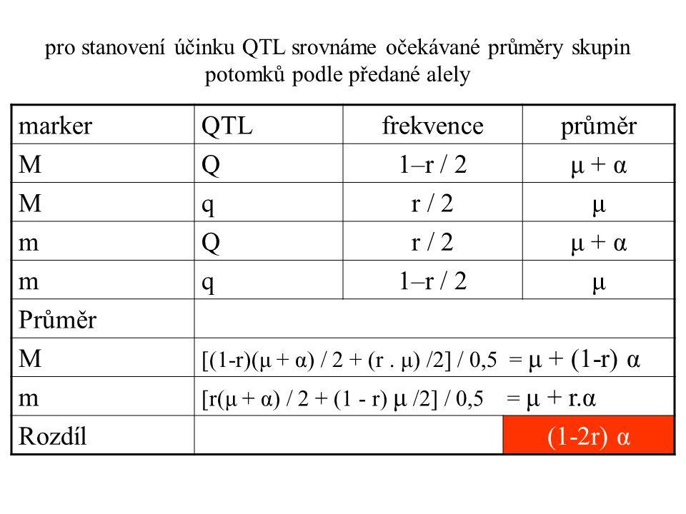 pro stanovení účinku QTL srovnáme očekávané průměry skupin potomků podle předané alely markerQTLfrekvenceprůměr MQ1–r / 2μ + α Mqr / 2μ mQ μ + α mq1–r / 2μ Průměr M [(1-r)(μ + α) / 2 + (r.