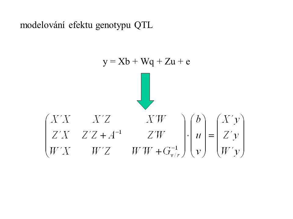 modelování efektu genotypu QTL y = Xb + Wq + Zu + e