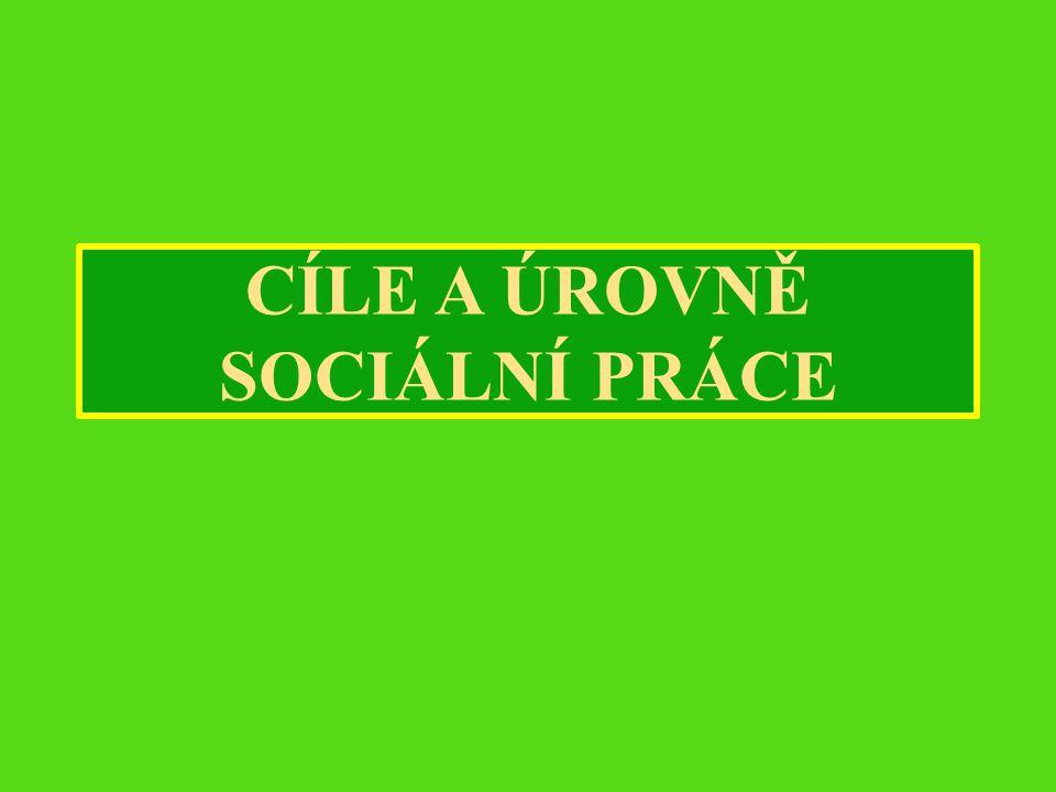 CÍLE A ÚROVNĚ SOCIÁLNÍ PRÁCE