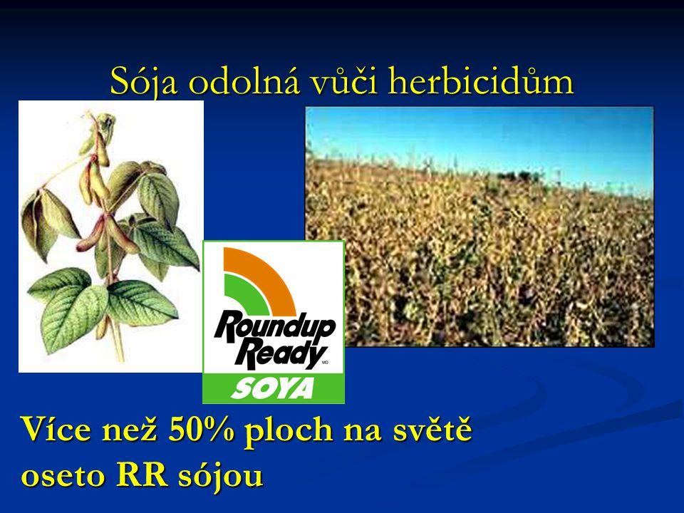 Sója odolná vůči herbicidům Více než 50% ploch na světě oseto RR sójou