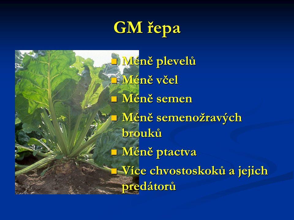 GM řepa Méně plevelů Méně plevelů Méně včel Méně včel Méně semen Méně semen Méně semenožravých brouků Méně semenožravých brouků Méně ptactva Méně ptac
