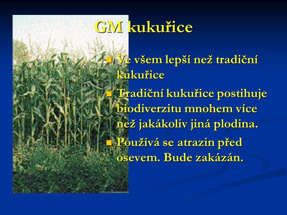 GM kukuřice Ve všem lepší než tradiční kukuřice Ve všem lepší než tradiční kukuřice Tradiční kukuřice postihuje biodiverzitu mnohem více než jakákoliv