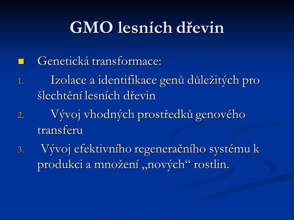 GMO lesních dřevin Genetická transformace: Genetická transformace: 1. Izolace a identifikace genů důležitých pro šlechtění lesních dřevin 2. Vývoj vho