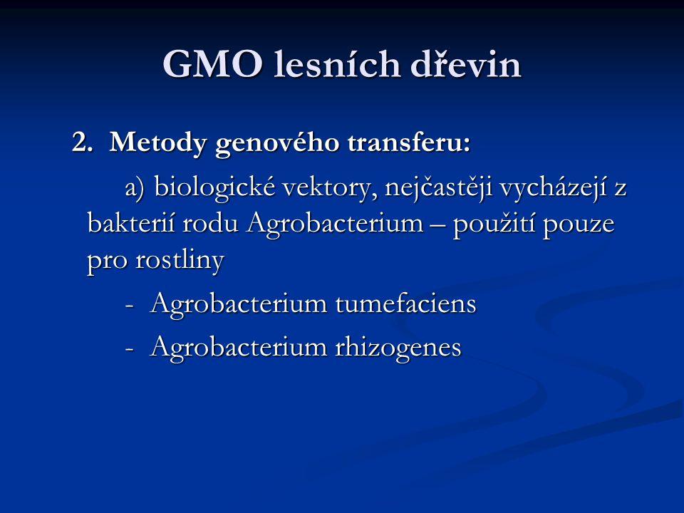 GMO lesních dřevin 2. Metody genového transferu: 2. Metody genového transferu: a) biologické vektory, nejčastěji vycházejí z bakterií rodu Agrobacteri