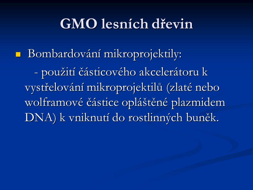 GMO lesních dřevin Bombardování mikroprojektily: Bombardování mikroprojektily: - použití částicového akcelerátoru k vystřelování mikroprojektilů (zlat