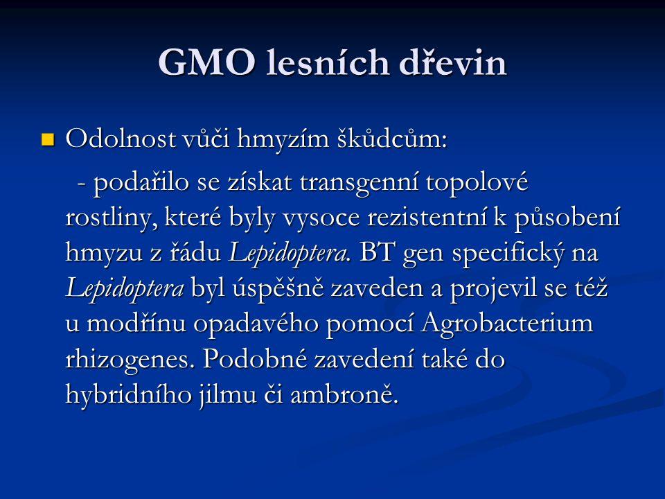 GMO lesních dřevin Odolnost vůči hmyzím škůdcům: Odolnost vůči hmyzím škůdcům: - podařilo se získat transgenní topolové rostliny, které byly vysoce re