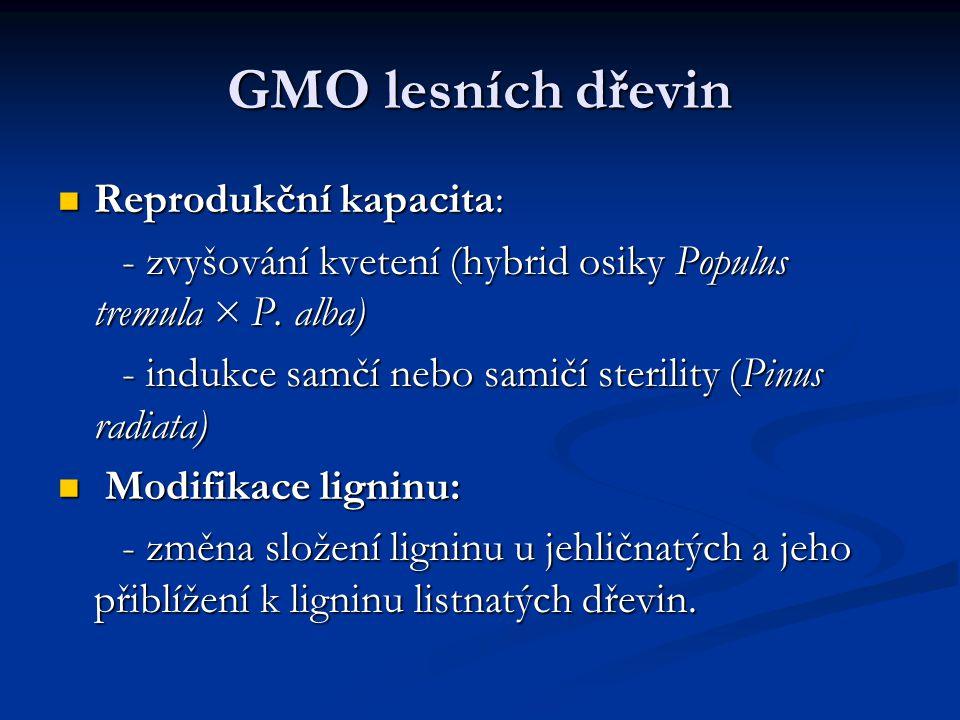 GMO lesních dřevin Reprodukční kapacita: Reprodukční kapacita: - zvyšování kvetení (hybrid osiky Populus tremula × P. alba) - zvyšování kvetení (hybri