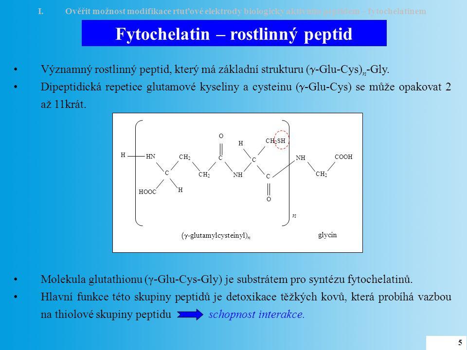Modifikace elektrody I.Ověřit možnost modifikace rtuťové elektrody biologicky aktivním peptidem – fytochelatinem 1 omytí elektrody 3 fytochelatin 2 adsorpce fytochelatinu elektrochemická detekce 4 500 μM PC 2 –1.2 –0.9 –0.6 –0.3 Potenciál (V) 2 nA PC 2 obnovení povrchu Doba akumulace (s) 1 mM Výška píku (nA) 10 μM 6 Převzato z Adam, V.; et.al.