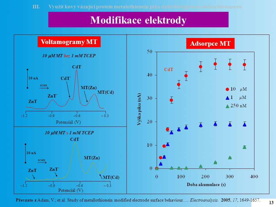 Konstrukce biosensoru těžký kov MT interakce s těžkým kovem 4 omytí elektrody 51 3 elektrochemická detekce 6 voltamogram MT 2 adsorpce MT III.Využít kovy vázající protein metalothionein jako další biologickou složku biosensoru 14 Převzato z Adam, V.; et.al.
