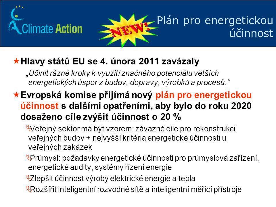 """9 Plán pro energetickou účinnost  Hlavy států EU se 4. února 2011 zavázaly """"Učinit rázné kroky k využití značného potenciálu větších energetických ús"""
