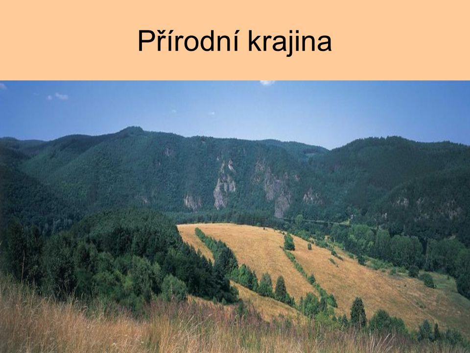 Přírodní krajina