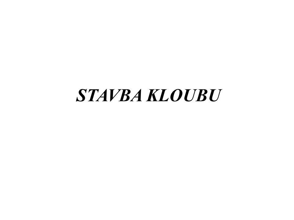 STAVBA KLOUBU