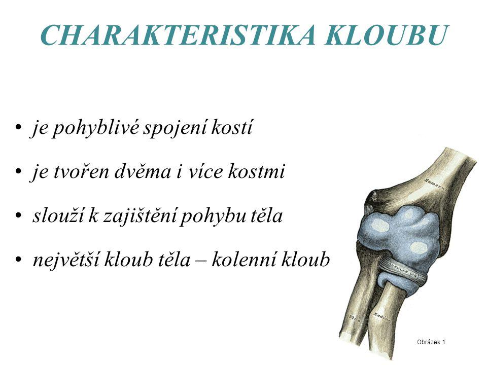 CHARAKTERISTIKA KLOUBU je pohyblivé spojení kostí je tvořen dvěma i více kostmi slouží k zajištění pohybu těla největší kloub těla – kolenní kloub Obrázek 1