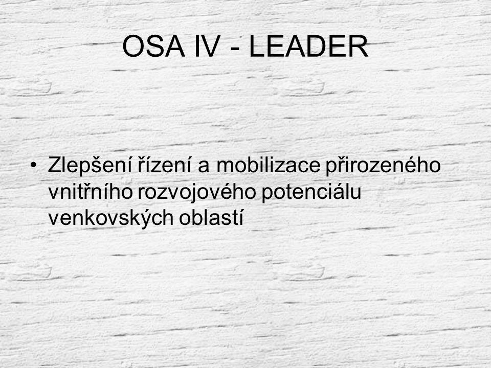 OSA III priorita III.3 – vzdělávání a místní partnerství Opatření III.4 - týkající se získávání dovedností a propagace za účelem přípravy a provádění