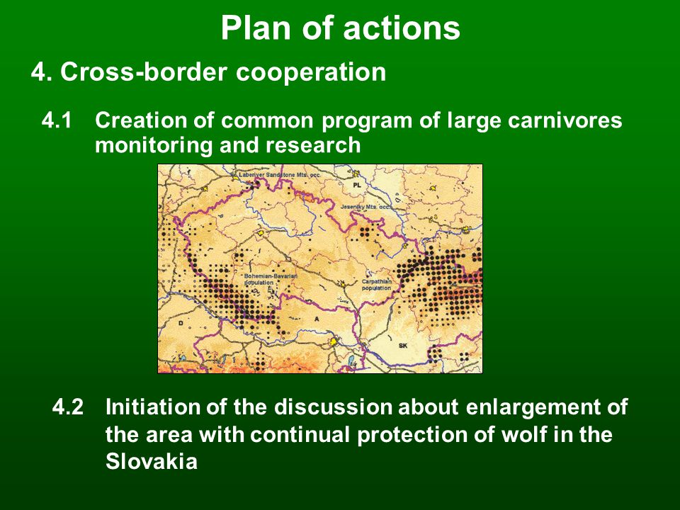 5.1 Detailed monitoring in selected areas 5.2Mapping the carnivores area of distribution in the whole Czech Republic using questionnaires 5.3Collecting the data about dead individuals 5.