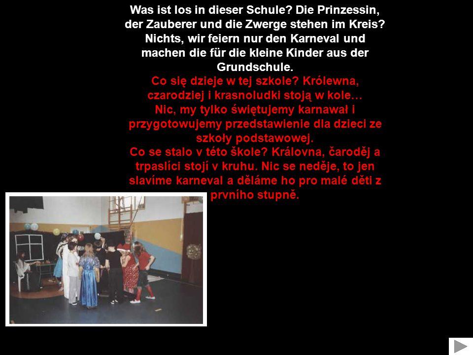 Was ist los in dieser Schule.Die Prinzessin, der Zauberer und die Zwerge stehen im Kreis.