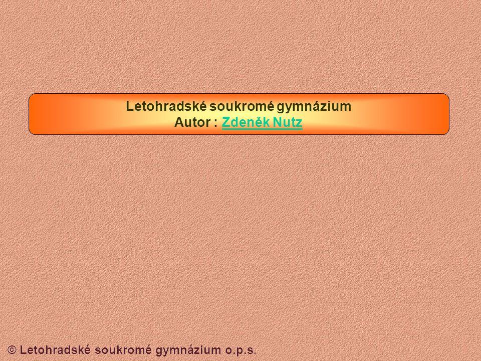 © Letohradské soukromé gymnázium o.p.s. HLEDÁNÍ SOUBORU Formulář pro hledání – vyplňte správně místo, kde chcete hledat a jaké soubory chcete hledat N