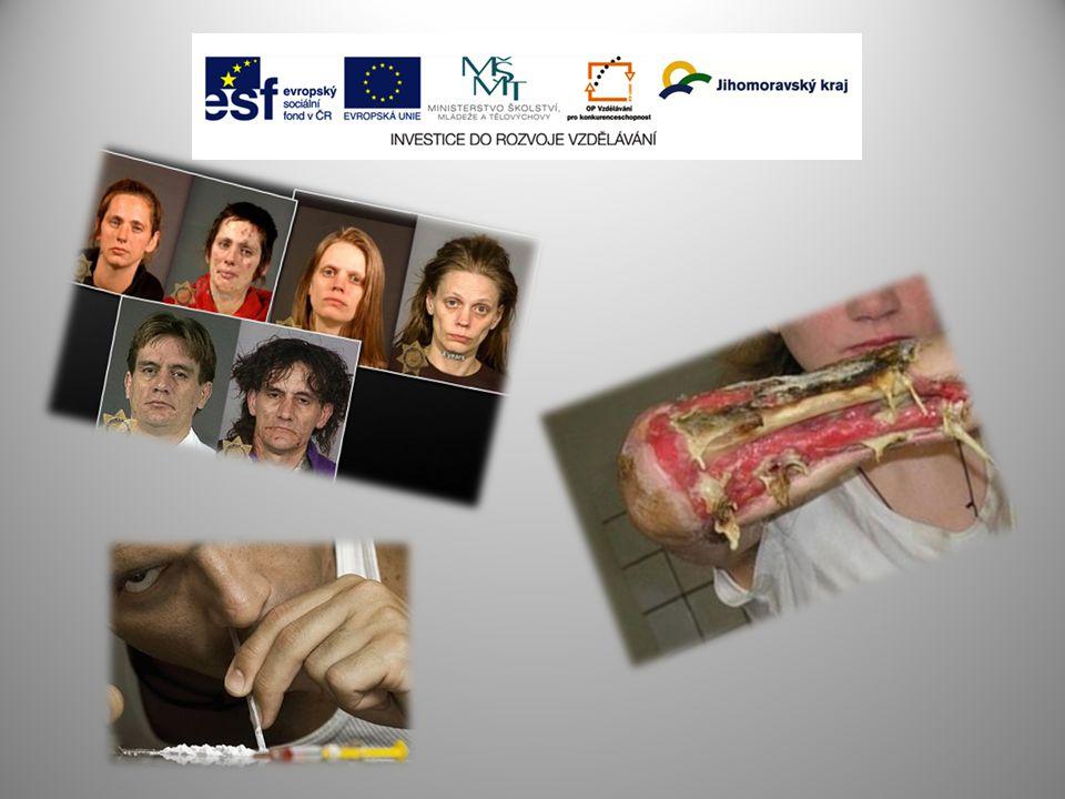 Pořádání seminářů a konferencí k odborným otázkám v oblasti protidrogové politiky v ÚSC, tvorba systému vzdělávání v oblasti protidrogové politiky a j