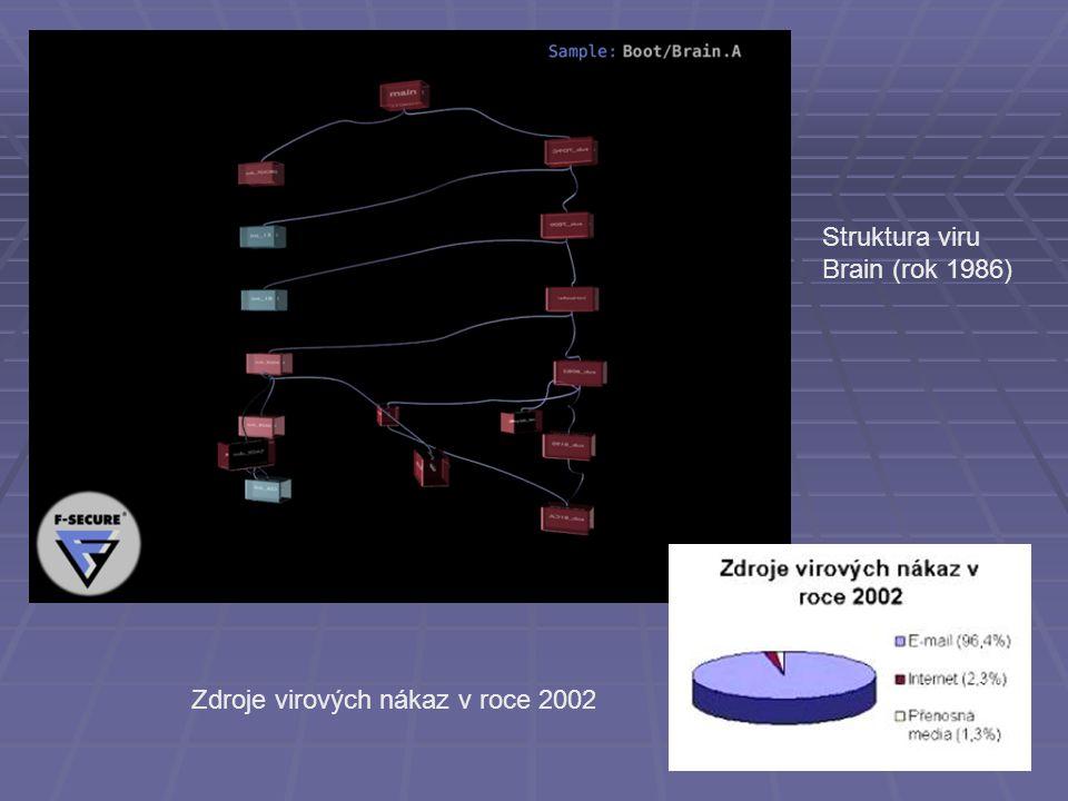 Struktura viru Brain (rok 1986) Zdroje virových nákaz v roce 2002