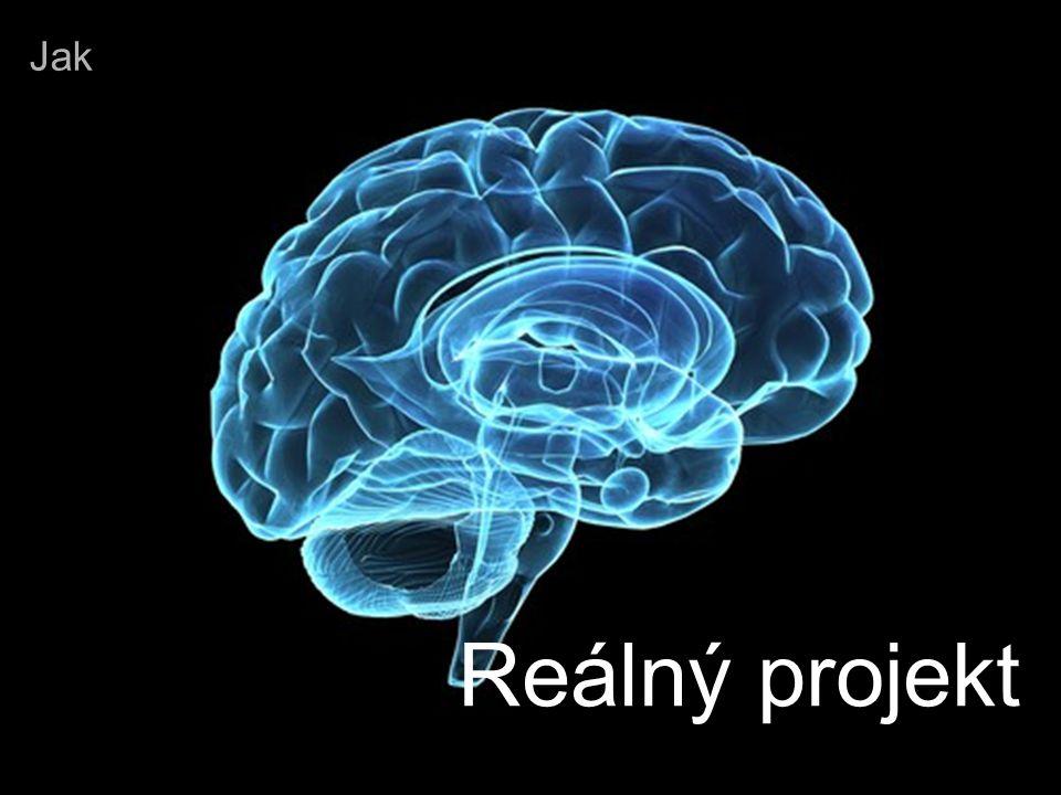 Academic initiation © 2009 IBM Corporation May 14, 2009 Reálný projekt Jak