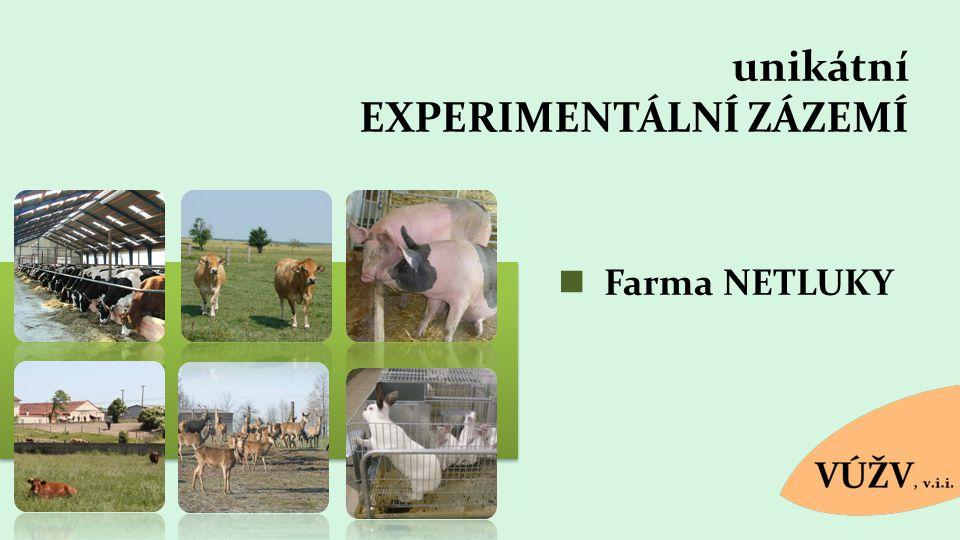 unikátní EXPERIMENTÁLNÍ ZÁZEMÍ Farma NETLUKY