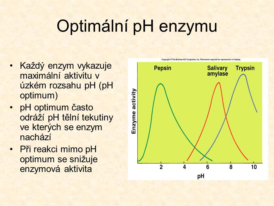 Optimální pH enzymu Každý enzym vykazuje maximální aktivitu v úzkém rozsahu pH (pH optimum) pH optimum často odráží pH tělní tekutiny ve kterých se en
