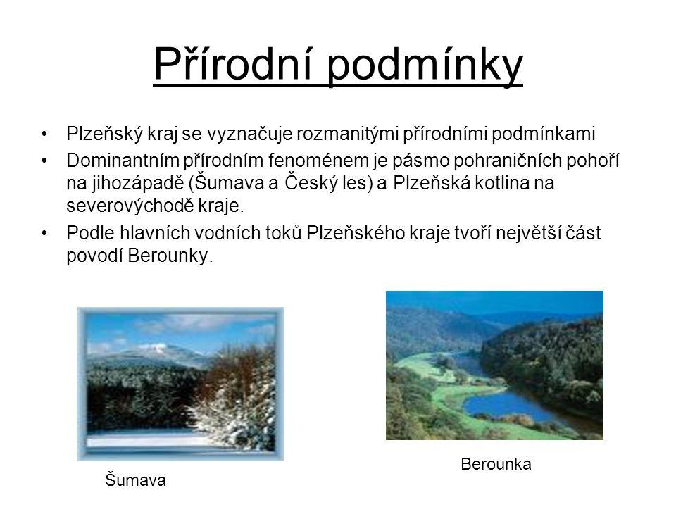 Plzeňský kraj se vyznačuje rozmanitými přírodními podmínkami Dominantním přírodním fenoménem je pásmo pohraničních pohoří na jihozápadě (Šumava a Česk