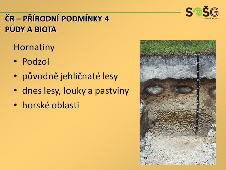 Hornatiny Podzol původně jehličnaté lesy dnes lesy, louky a pastviny horské oblasti ČR – PŘÍRODNÍ PODMÍNKY 4 PŮDY A BIOTA