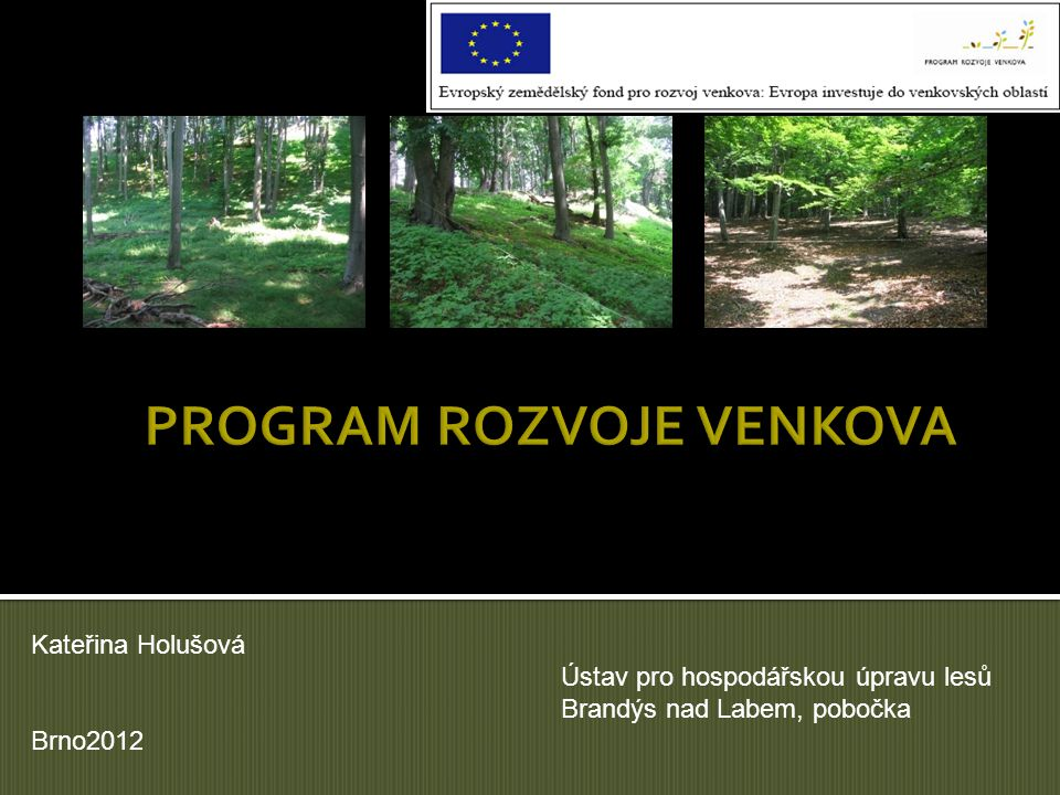 Kateřina Holušová Ústav pro hospodářskou úpravu lesů Brandýs nad Labem, pobočka Brno2012