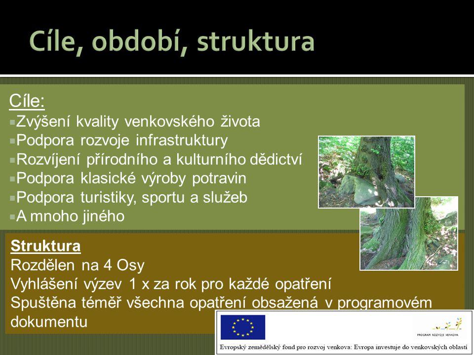 Cíle:  Zvýšení kvality venkovského života  Podpora rozvoje infrastruktury  Rozvíjení přírodního a kulturního dědictví  Podpora klasické výroby pot